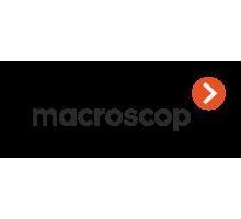 Лицензия на работу с 1 IP-камерой MACROSCOP LS (х64)
