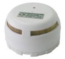 ИДТ-2 (макс.) ИП 212/101-18-А2 ИБ